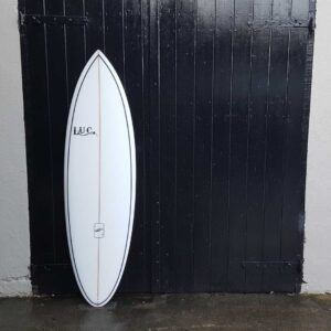 pin twin surfboard
